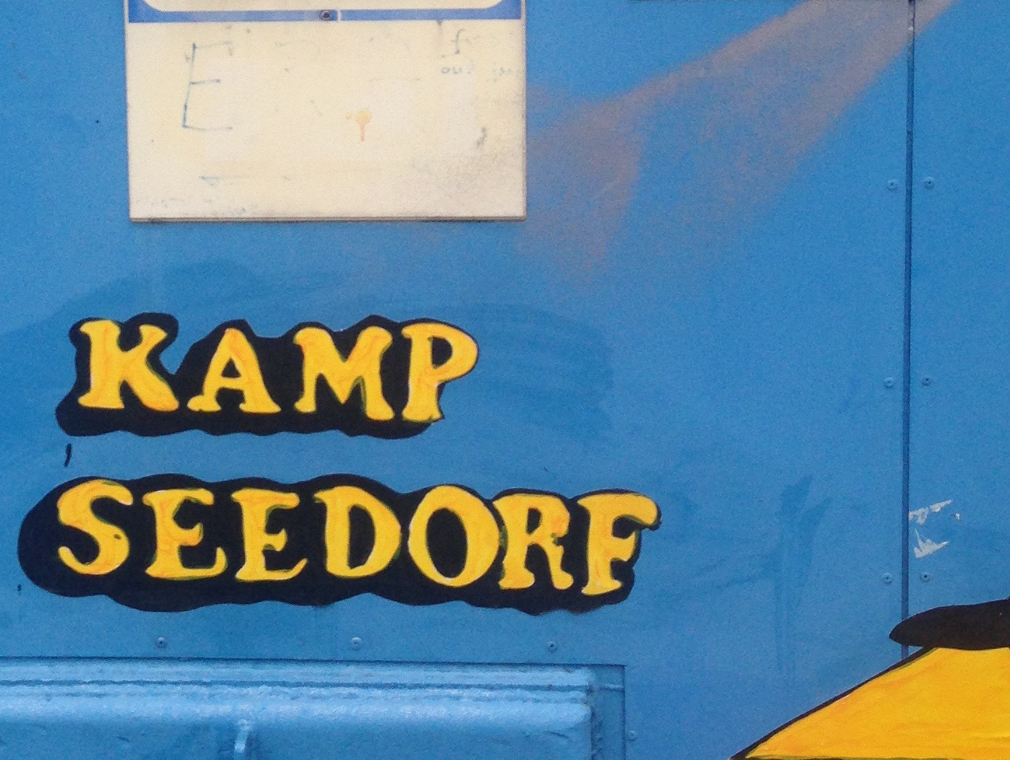 dagobert-duck-goudkoorts-kamp-seedorf7